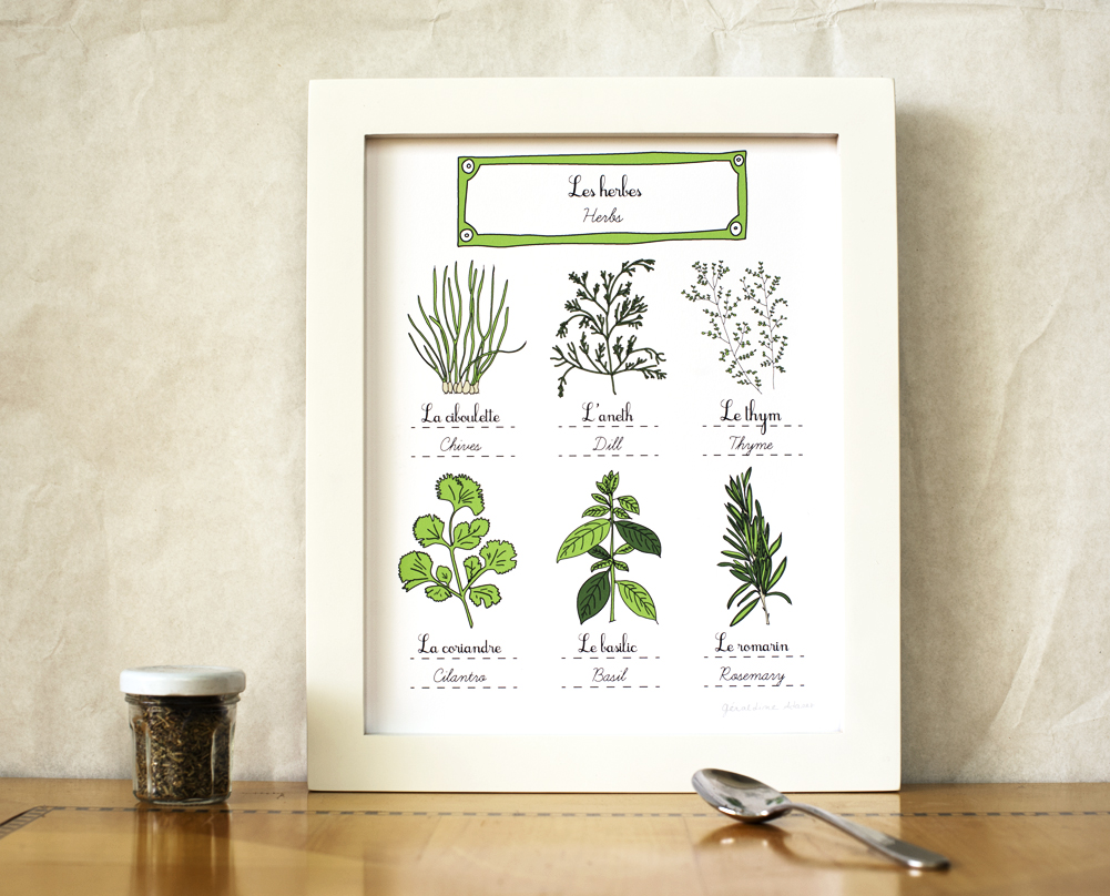 Giveaway french herbs 8 10 art print geraldine adams for French kitchen artwork