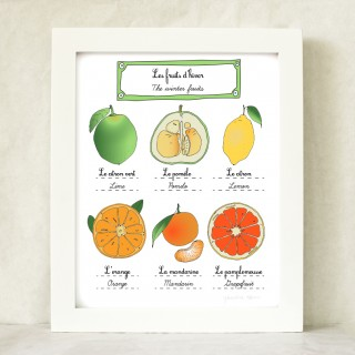Winter Citrus Fruits Art Prints